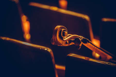 Photo for Close up shot of a double bass scroll and tuning pegs. - Royalty Free Image