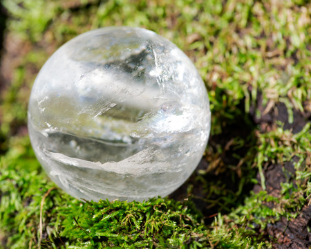 Photo pour Lemurian Clear Quartz Sphere crystal magical orb on moss, bryophyta and bark, rhytidome in forest preserve. - image libre de droit
