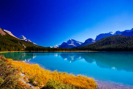 The Sunwapta River is a major tributary of the Athabasca River in Jasper National Park in Alberta, Canada. The headwaters of the Sunwapta River are near the Columbia Icefield.