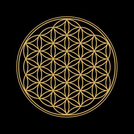 Illustration for Flower of Life design image, vector illustration. Sacred geometry, symbol of healing and balance. Gold edition. - Royalty Free Image
