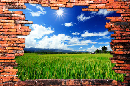 Brick wall with hole revealing green rice farm and clouds