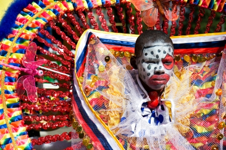 Trinidad, West Indies - February 2 - An unidentified costumed participant takes part in Trinidad Carnival celebrations during Junior Parade of the Bands February 2, 2008 in Trinidad W I