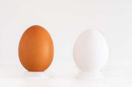 Brown and white eggs next to eachother isolated against white background