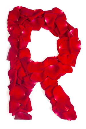 Alphabet letter R made from red petals rose isolated on a white background