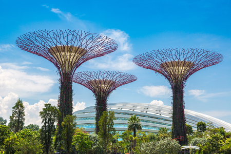 Photo pour SINGAPORE - JUNE 23, 2018: The Supertree Grove at Gardens by the Bay and Greenhouse in Singapore near Marina Bay Sands hotel at summer day - image libre de droit