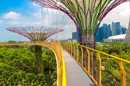 Photo pour SINGAPORE - JUNE 23, 2019: The Supertree Grove and Skyway at Gardens by the Bay in Singapore near Marina Bay Sands hotel at summer day - image libre de droit
