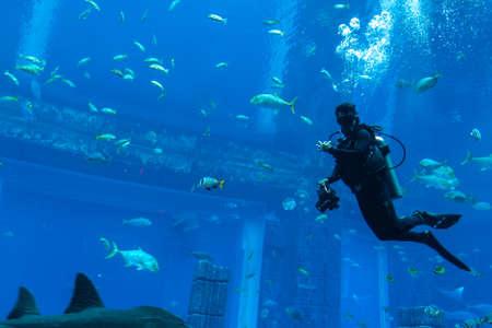 Photo pour DUBAI, UAE - APRIL 5, 2020:  Scuba diver in Lost chambers - Large aquarium in Hotel Atlantis in Dubai, United Arab Emirates - image libre de droit