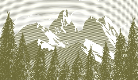 Woodcut style illustration of an opening in the trees with a mountain in the background.