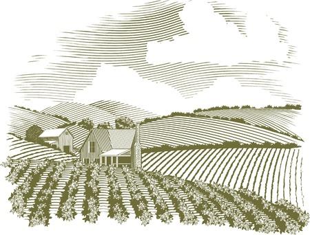 Illustration pour Woodcut style illustration of a rural farm house with fields of crops surrounding it. - image libre de droit