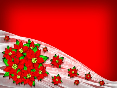 Foto per Flower Poinsettia Christmas Background  - Immagine Royalty Free