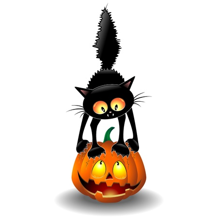 Scared Halloween Cat Cartoon scratching a Pumpkin