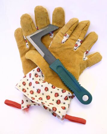 A pair of garden gloves and a paving scraper.