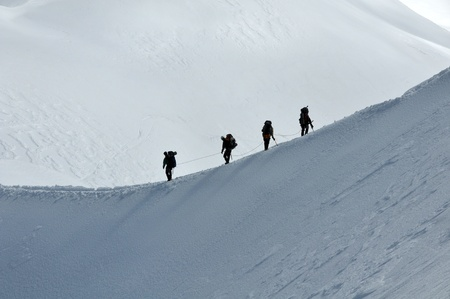 View of a group hiking on slope of high Alps mountains.