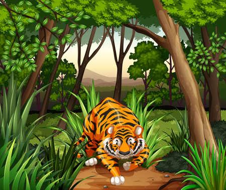 Illustration pour Tiger walking in a jungle - image libre de droit