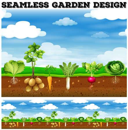 Different kind of vegetables in the garden illustration
