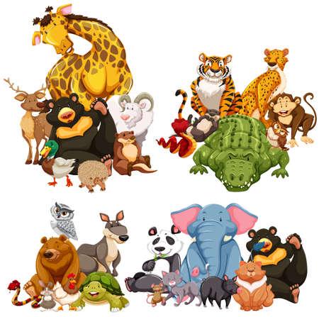 Ilustración de Four group of wild animals illustration - Imagen libre de derechos