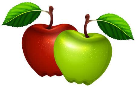 Ilustración de Fresh green and red apples illustration - Imagen libre de derechos