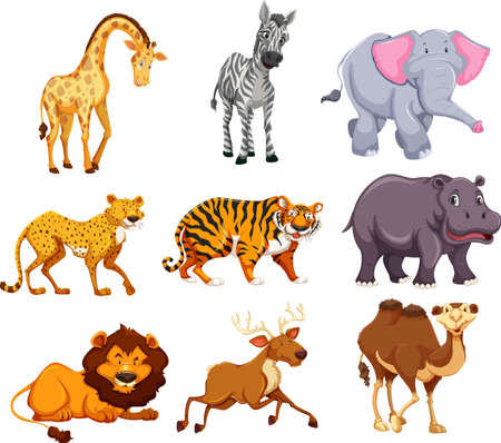 Photo pour Set of wild animal illustration - image libre de droit