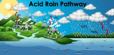 Illustration pour Diagram showing acid rain pathway illustration - image libre de droit
