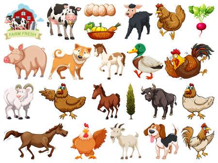 Illustration pour Set of farm element illustration - image libre de droit