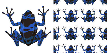 Illustration pour Blue poison dart frog isolated on white background and seamless illustration - image libre de droit
