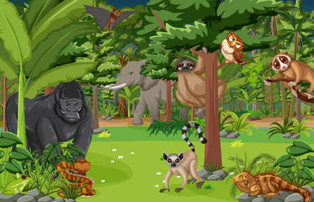 Illustration pour Wild animal cartoon character in the forest scene illustration - image libre de droit