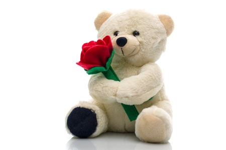 Soft plush teddy bear toy clutching a single red rose in its arms for an anniversary or Valentines celebration