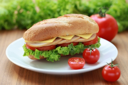 Closeup of a fresh sandwich with turkey, cheese and tomatoes