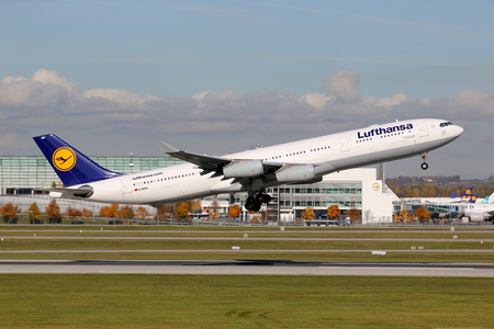 Munich, Germany - October 24, 2013: A Lufthansa Airbus A340-300 with the registration D-AIGU takes off from Munich Airport (MUC). Lufthansa is the German flag carrier and Europe's largest airline with some 665 planes and 103 million passengers in 2012. Mu