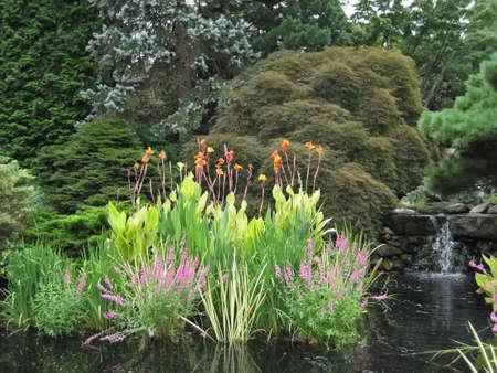 Flowers by waterfall in a garden.