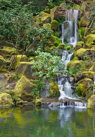 Moss Covered Waterfall