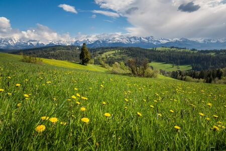 Photo pour Panorama of snowy Tatra mountains in spring from Gliczarow Gorny, Malopolskie, Poland - image libre de droit