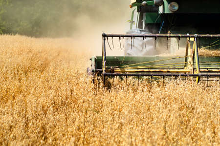 Photo pour Harvesting machine in wheat crops  - image libre de droit