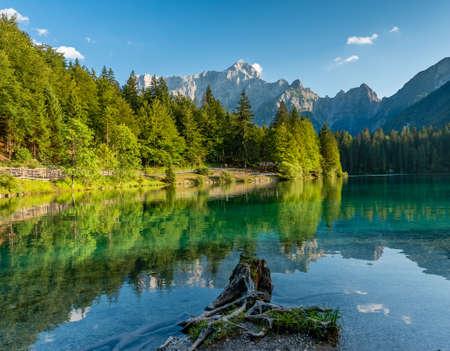 Photo pour Alps Mountain Trees Reflected in a Lake - image libre de droit
