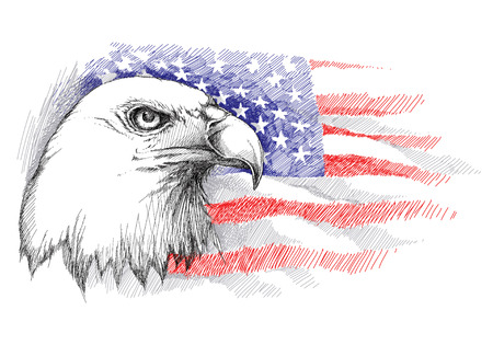 sketch of bald eagle head on the background with American