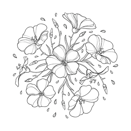 Ilustración de Round bouquet with outline Flax plant or Linseed or Linum. Flower bunch, bud and leaf in black isolated on white background. Ornate Flax in contour style for summer design and coloring book. - Imagen libre de derechos