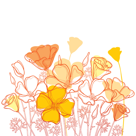 Illustration for Bouquet with outline orange California poppy flower or California sunlight or Eschscholzia, leaf and bud isolated on white background. Ornate contour poppies for enjoying summer design. - Royalty Free Image