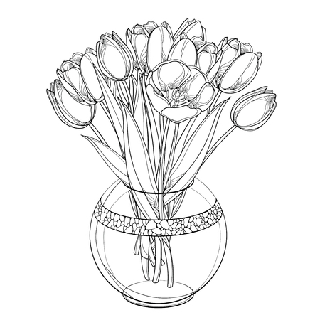 Illustration for Bouquet wit tulip, bud and leaves isolated on white background. - Royalty Free Image