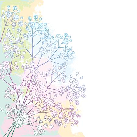 Illustration pour Corner bouquet with Gypsophila or Baby's breath. - image libre de droit