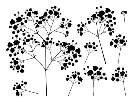 Illustration pour set of Gypsophila or Baby's breath branch. - image libre de droit