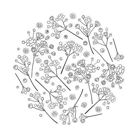 Illustration pour Contour Gypsophila for spring design or coloring book. - image libre de droit