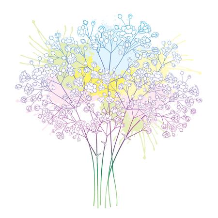 Illustration pour Bouquet with pastel Gypsophila or Baby's breath. - image libre de droit
