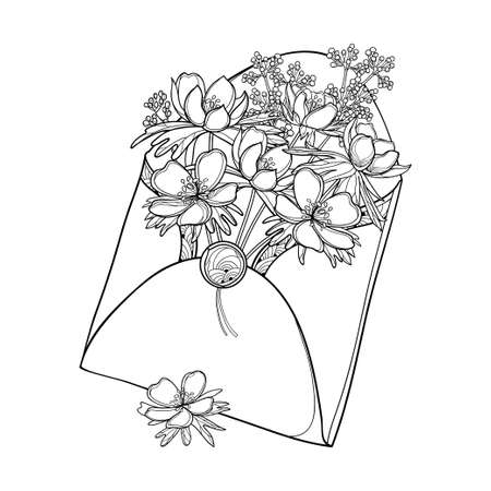 Illustration pour Bouquet with Eranthis or winter aconite in open envelope in black isolated on white. - image libre de droit