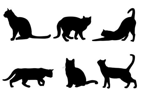 Illustration for cats silhouettes - vector - Royalty Free Image