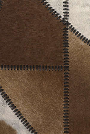 Cow fur or skin background or texture