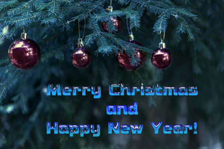 Photo pour Merry Christmas and Happy New Year greetings. Red glass balls on green pine branches. Christmas card - image libre de droit