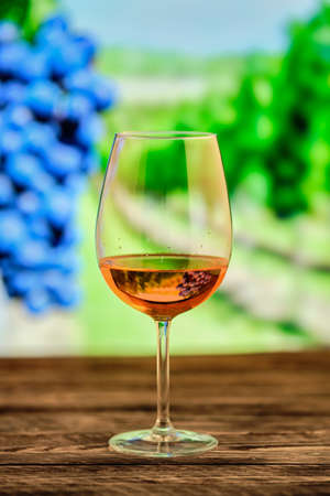Photo pour Glass of rose wine with blurred vineyard on background - image libre de droit