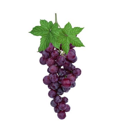 Foto für fresh red grape with leaf isolated on white background - Lizenzfreies Bild