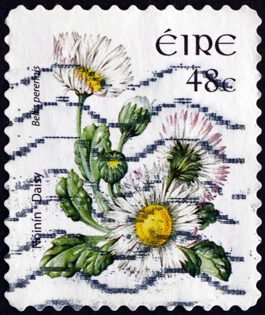 IRELAND - CIRCA 2004: a stamp printed in Ireland shows Daisy, Bellis Perennis, Flowering Plant, circa 2004