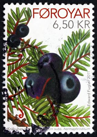 FAROE ISLANDS - CIRCA 2011: a stamp printed in Faroe Islands shows Crowberries, Empetrum Nigrum, Flowering Plant, circa 2011